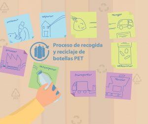 infografia proceso de recogida y reciclaje botellas PET